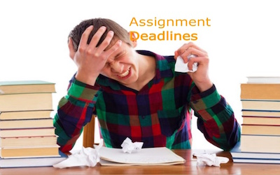 assignment, essay, writing, tips